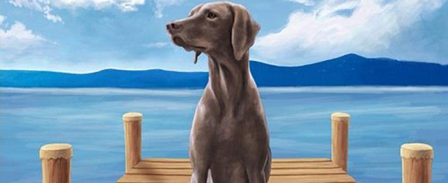 Photo of Former Utah Rep. Christine Johnson releases 'Havoc the Lake Dog'