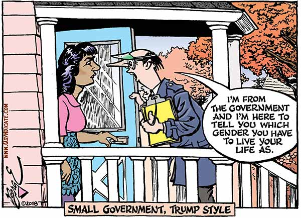 Photo of Cartoon – Small Government, Trump Style