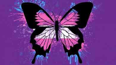 Photo of Raising butterflies