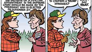 Photo of Cartoon – In Fairness